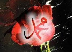 Hutba: Muhammed, sallallahu alejhi ve sellem, je svjetiljka koja sija