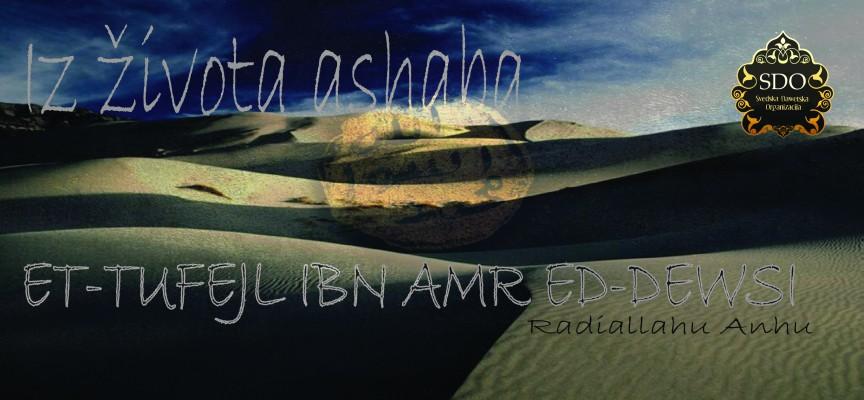 Et-Tufejl ibn Amr ed-Dewsi