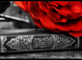 Odlike sljedbenika Allahovog poslanika sallallahu alejhi we sellem