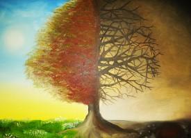 Islamska psihologija: Podsjećanje na nagradu i kaznu kao odgojna metoda