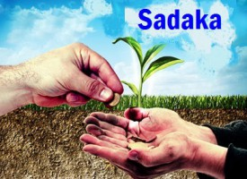 Djeljenje na Allahovom putu – Dr. Safet Kuduzović