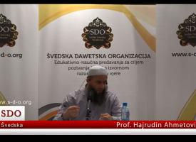 Prof Hajrudin Ahmetovic, neke od koristi braka