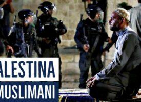 Naša braća i sestre u Palestini i Siriji!! [Mohamed Hoblos]